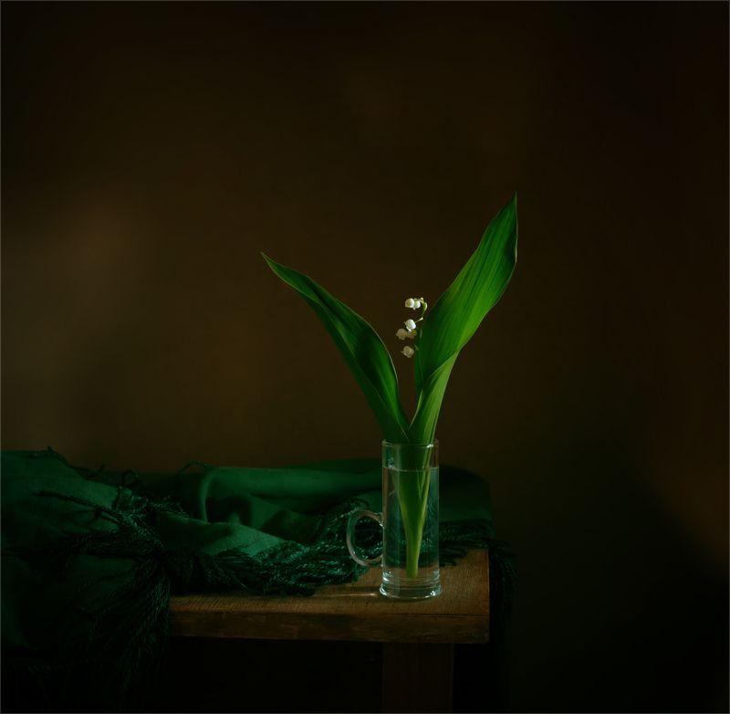 still life, натюрморт,  цветы, природа, ландыши, весна, винтаж натюрморт с ландышемphoto preview