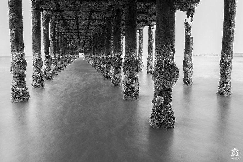 sea,nature,rock,water,calm,landscape,iran,dream,fog,abstract,canon,canon80d,canonphotography,blackandwhite,black,white,mphammadhemmaty,corridor Corridor in the seaphoto preview