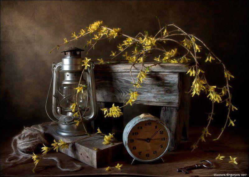 форзиция, цветёт, весна, цветущая, ветка, часы, время, будильник, керосиновая, лампа, натюрморт, ключ, клубок, верёвка Десять минут весныphoto preview