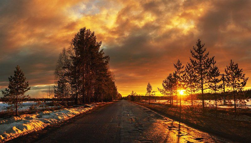 пейзаж,свет,россия,перспектива,дорога,пейзаж,деревья,солнце,небо,панорама Весеняяphoto preview