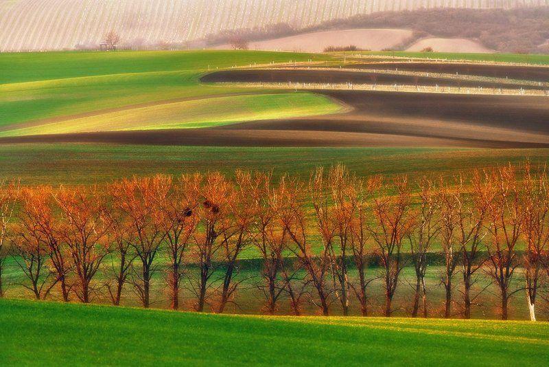 morawy,czech republik,krajobraz Morawy 2.photo preview