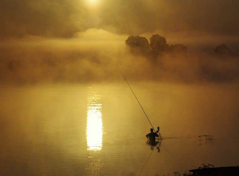 рассвет, рыбак, туман, река, солнце, пейзаж, свет, беларусь, morning, fog, river, landscape, fishman, light, belarus Ловец солнцаphoto preview