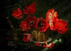 Пора тюльпанов