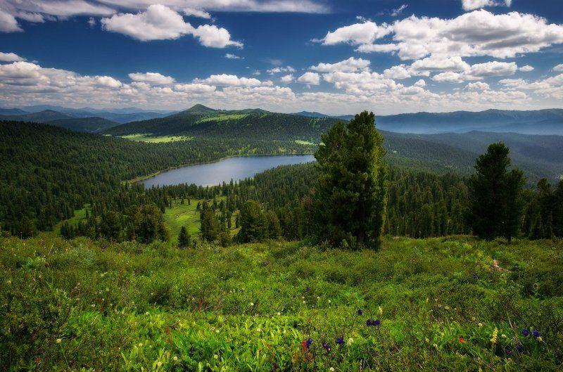 ергаки, горы, саяны, лето, сибирь, светлое В Светлый день!photo preview