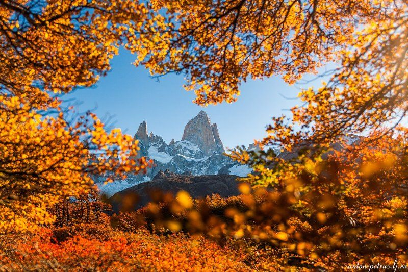 патагония, горы, рассвет, аргентина Золото Патагонииphoto preview