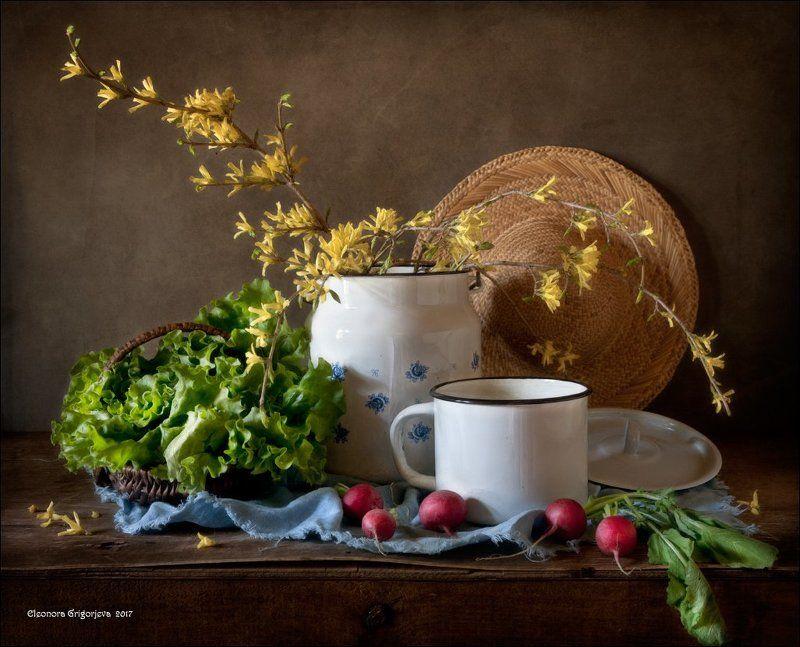 форзиция, весна, зелень, свежая, редиска, салат, бидон, кружка, натюрморт, соломенная, шляпка, корзинка Первая зеленьphoto preview