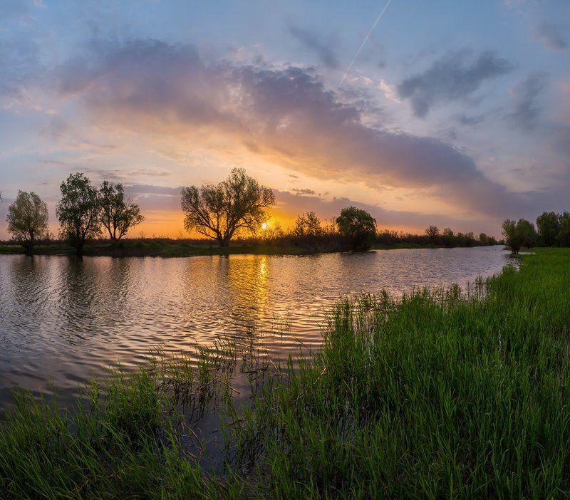 река, весна, половодье, рассвет, облака, солнце, дерево, трава, астраханская область, Вдохновение утра!photo preview