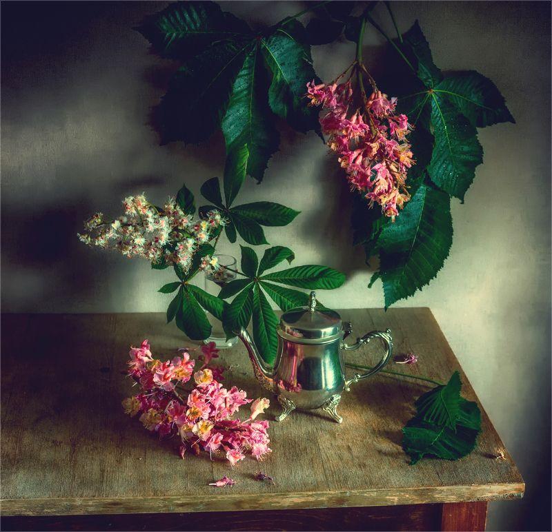 still life, натюрморт,  цветы, природа,  весна,  винтаж, цветы каштана, ветка натюрморт с веткой каштанаphoto preview