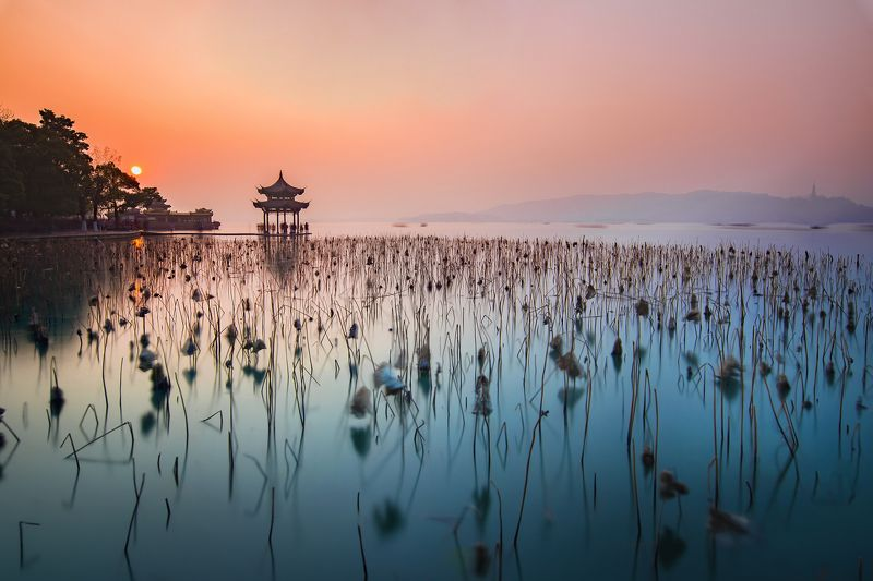 sunset, pagoda, winter, lotus, colour, westlake, long exposure Jixian Pagoda with winter lotusphoto preview