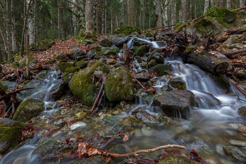кчр,карачаево-черкесия,горы ,теберда,водопад шумка,шумка Речка и Водопад Шумка ...photo preview