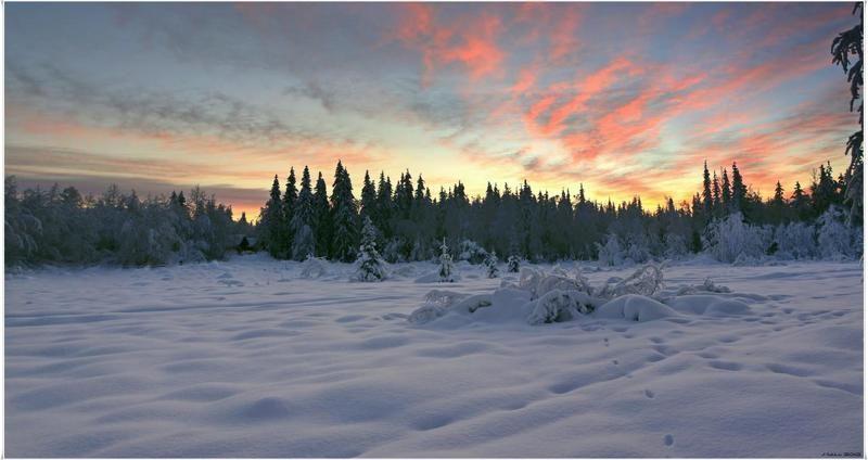 Новый зимний деньphoto preview
