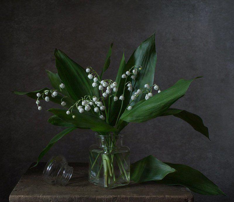 натюрморт, цветы, ландыши, весна Ландышиphoto preview
