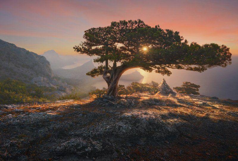 Новый Свет Крымский рассветphoto preview