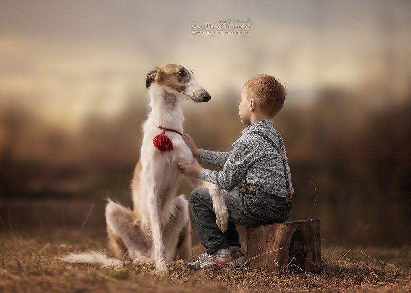 собаки, дети, рпб My friend Voltphoto preview