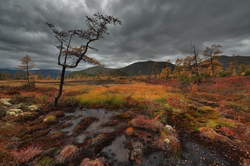 Магаданская осень...photo preview