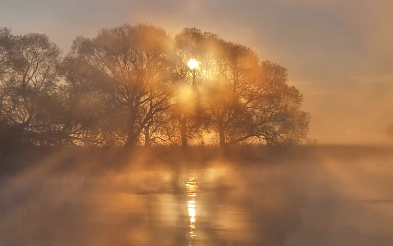 утро, туман, весна, свислочь Горячий рассветphoto preview