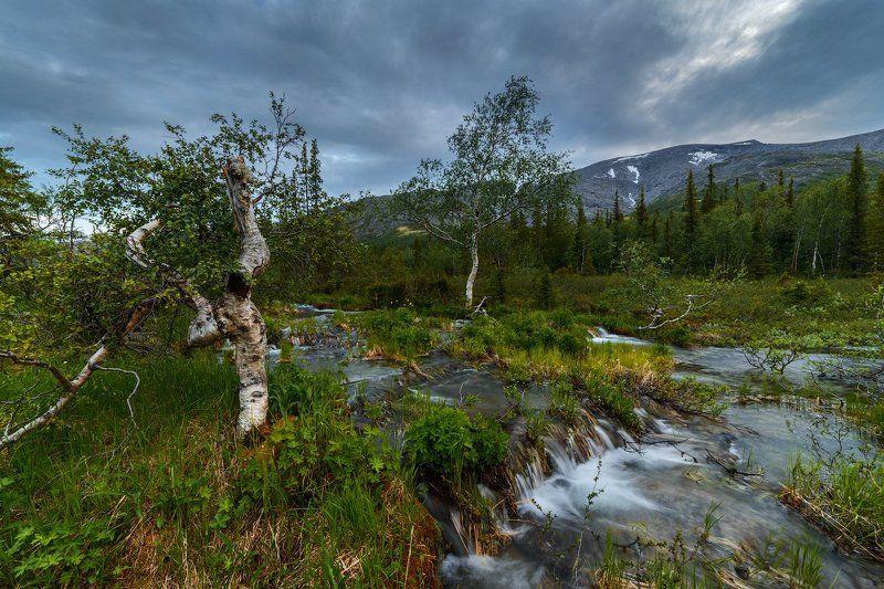 север, кольский, хибины, заполярье,лето, ночь, *photo preview