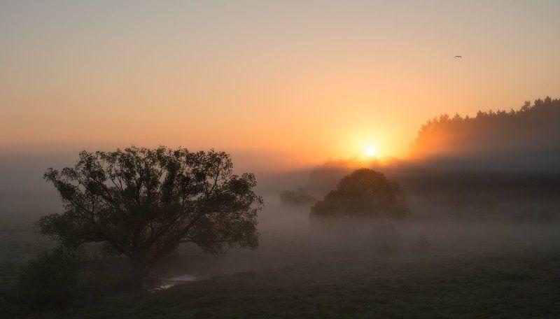 Утро раннее...photo preview