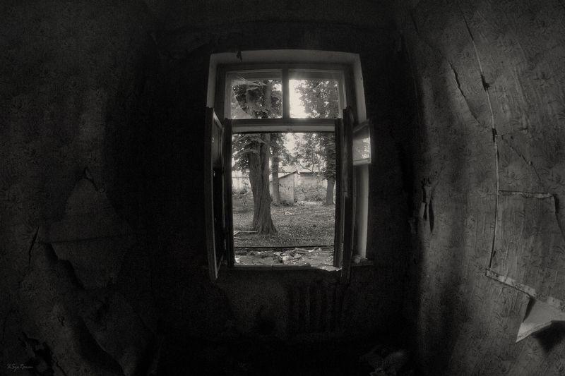 окно,стены,разруха Створки настежь ...photo preview