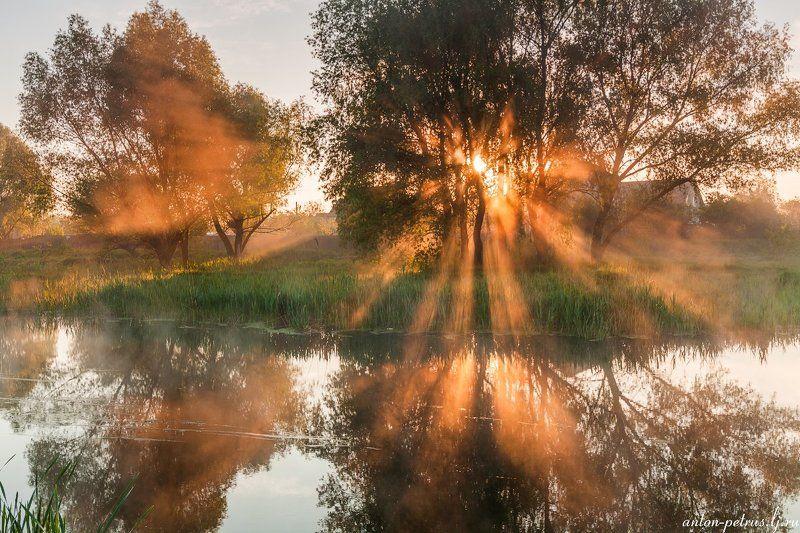 рассвет, туман, река, отражение Майские туманыphoto preview