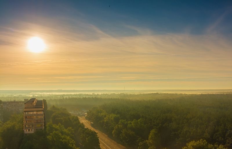 landscape, пейзаж, утро, лес, сосны, деревья, солнечный свет,  солнце, природа, дома, восход, дорога утроphoto preview