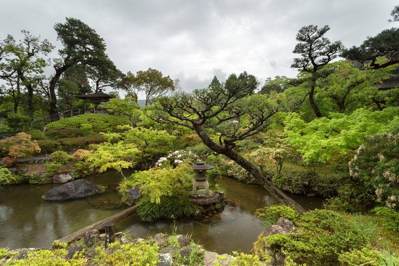 奈良市, нара, nara, сад, garden Нара - Nara -  奈良市photo preview