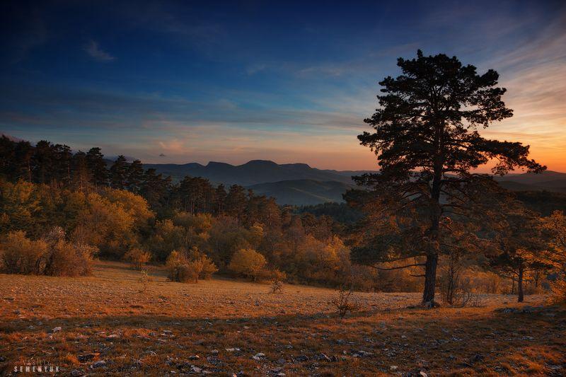 крым, басман, горы, сосны, закат, бойка. Теплым вечером на Басмане.photo preview
