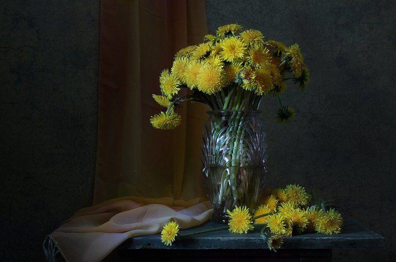 натюрморт, цветы, одуванчики * * *photo preview