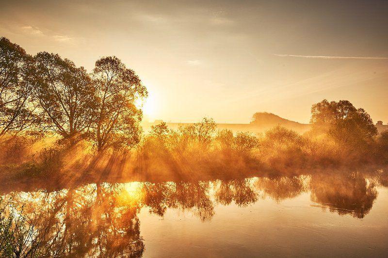 утро восход тульскаяобласть Золото Утраphoto preview