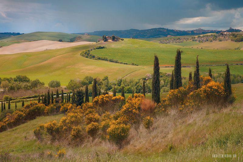 тоскана, природа, путешествие, пейзаж, toskana, италия, italy, landscape, nature Природа Тосканыphoto preview