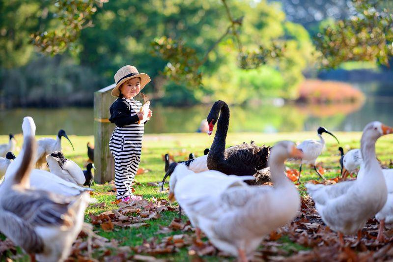 kid, girl, child, park, animal, black swan i\'m hungryphoto preview