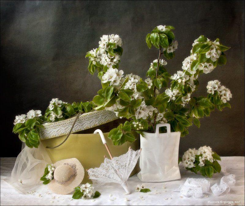 натюрморт, зонтик, кружева, шляпка, зеркало, шляпная коробка, цветущая, яблоня Дамские штучкиphoto preview