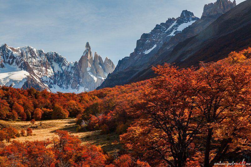 патагония, горы, рассвет, аргентина Серро Торреphoto preview
