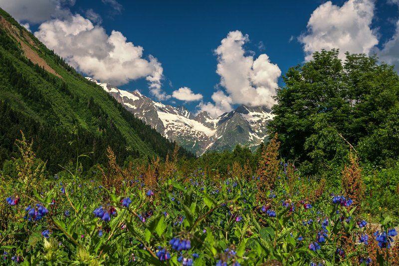 В горах Карачаяphoto preview