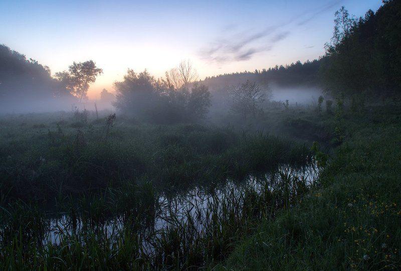 Утро в мае...photo preview