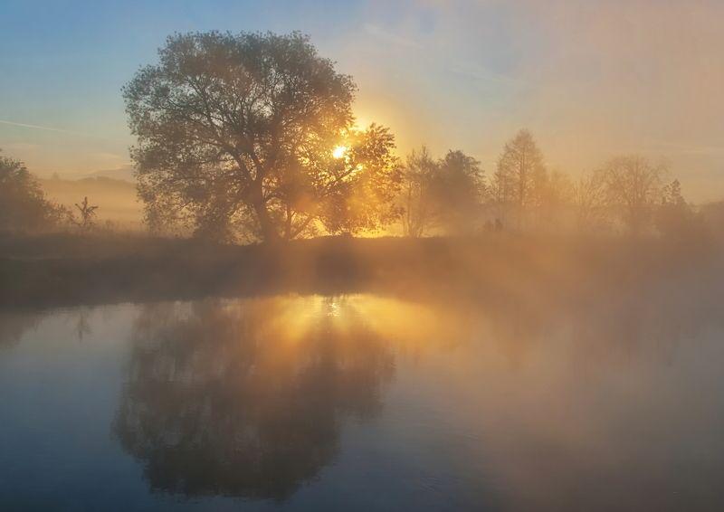 утро, туман, весна, свислочь Встало солнце золотоеphoto preview