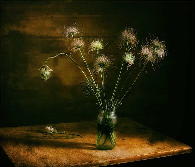 still life, натюрморт,  цветы, природа,  винтаж, минимализм, сон-трава букетик сон-травыphoto preview
