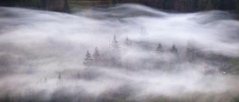 Весна, Карпаты, Май, Туман, Украина, Утро Надымилиphoto preview