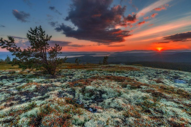 север, кольский, хибины, заполярье, имандра,лето,закат, сопка, *photo preview