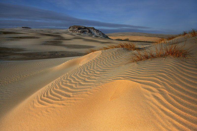 polska,bałtyk,plaża ,wydmy,hel On the dunes ...photo preview