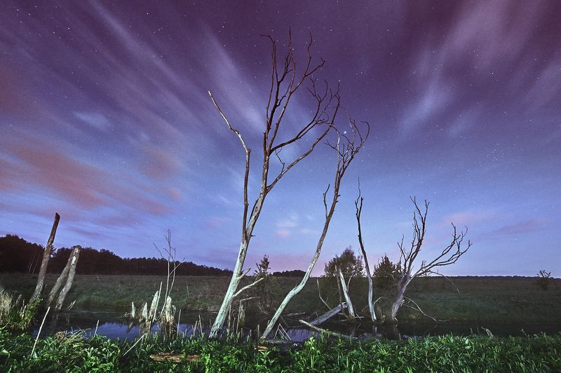 пейзаж, болото, ночь, длиннаявыдержка Дом Болотной Кикиморыphoto preview