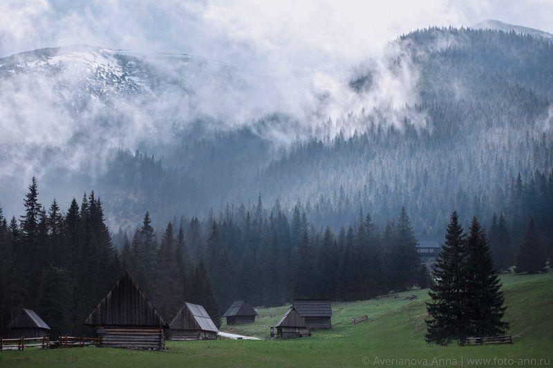 горы, долина, татры, Закопане, Польша Долинаphoto preview