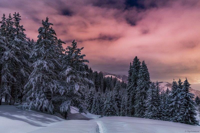 горы, ночь, лунный свет, зима Лунная ночьphoto preview