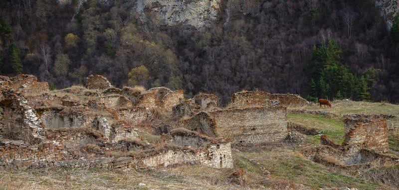 в горах Высоко в горахphoto preview
