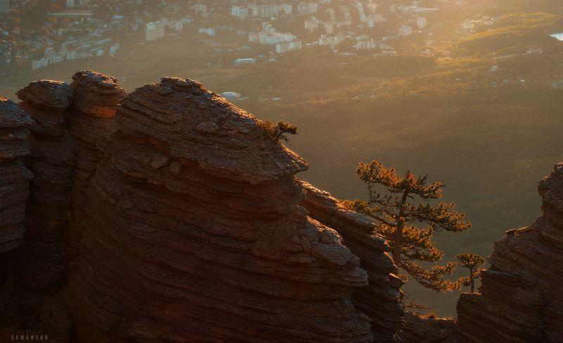 таракташ, крым, горы, ялта, скалы, рассвет, дерево, объёмный свет. Таракташ. Первый луч.photo preview