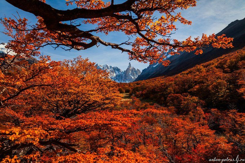 патагония, горы, закат, аргентина, ледник Серро Торре, лед и пламяphoto preview