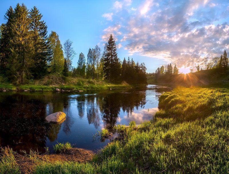 фототур, закат, река, весна, ленинградская область, деревья, лес, сказка, ели, облака, отражение, трава, берег, солнце. Закат на реке.photo preview