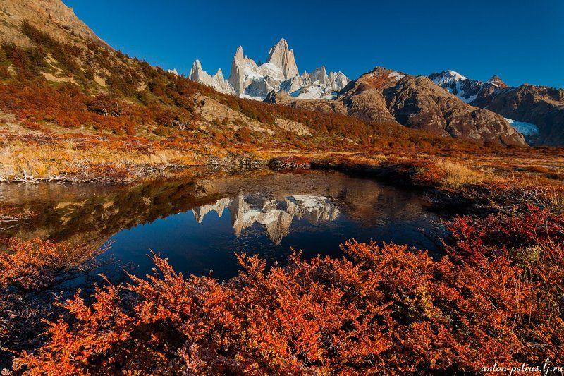 патагония, горы, рассвет, аргентина Рыжая осеньphoto preview