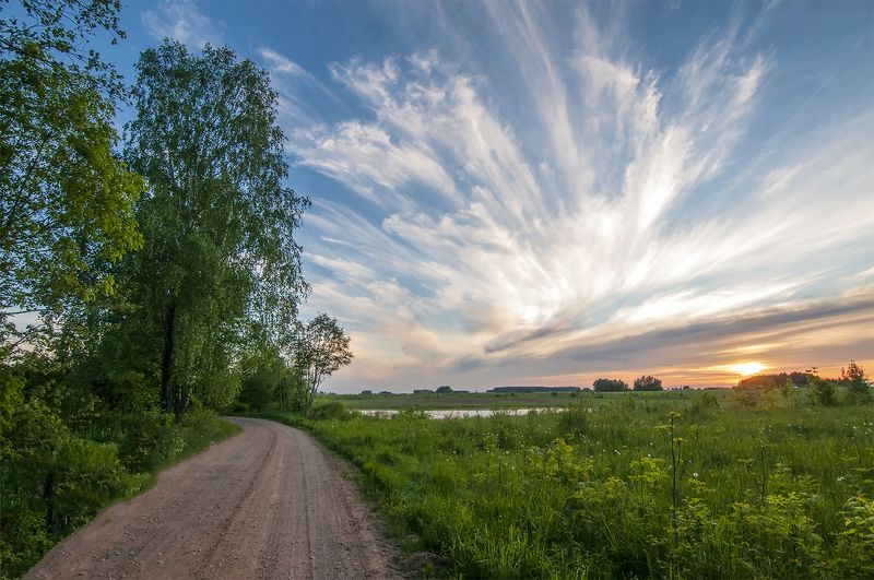 road,sunset,birches Eveningphoto preview