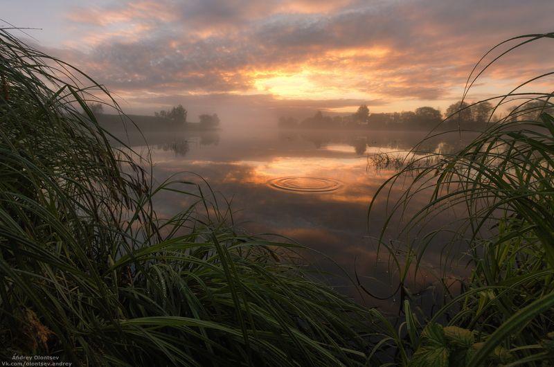 Прекрасное утро.photo preview